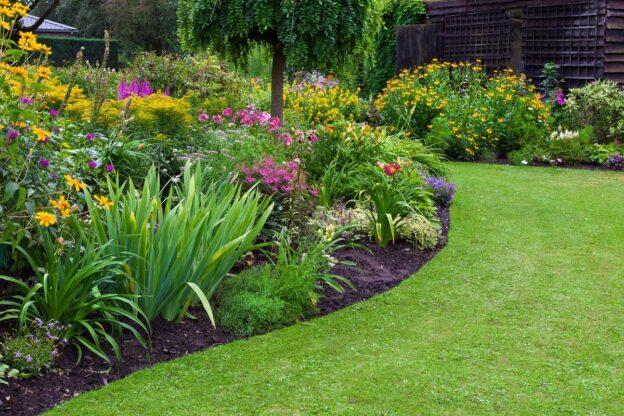 Garden with mulch off sideways